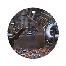 Bedded Buck D1342-021 Round Ornament