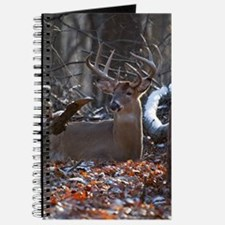Bedded Buck D1342-021 Journal