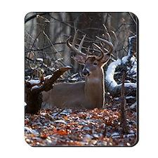 Bedded Buck D1342-021 Mousepad