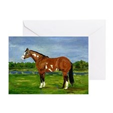 Paint Halter Horse Greeting Cards