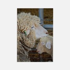 Stomper  Lamb Award Photo Rectangle Magnet