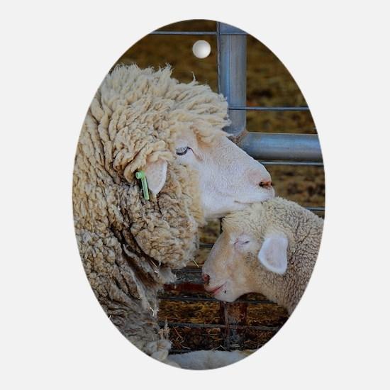 Stomper  Lamb Award Photo Oval Ornament