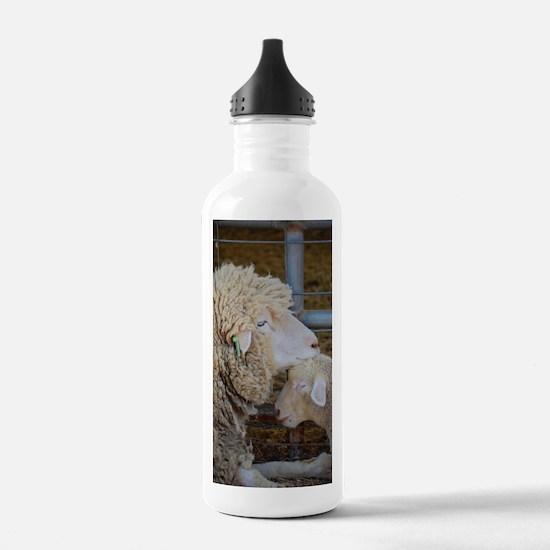 Stomper  Lamb Award Ph Water Bottle