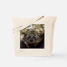 002Bearcat Tote Bag