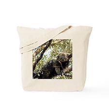 001Bearcat Tote Bag