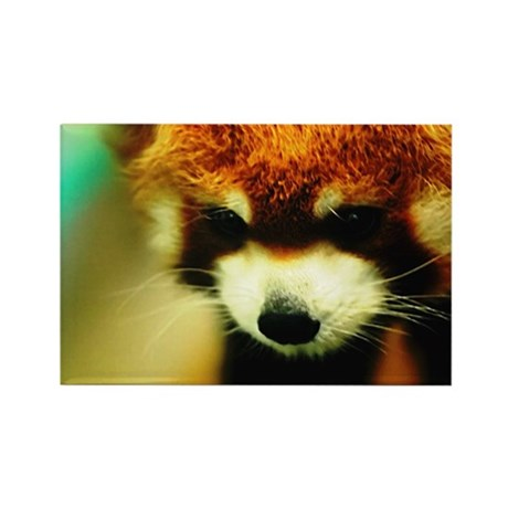 Red Panda Products Rectangle Magnet