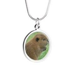 006 Silver Round Necklace
