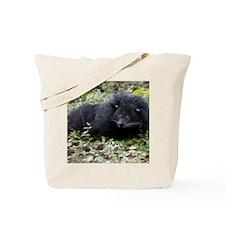 008Bearcat-edt Tote Bag