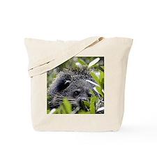 006Bearcat Tote Bag