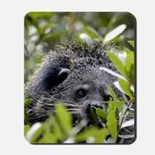 006Bearcat Mousepad