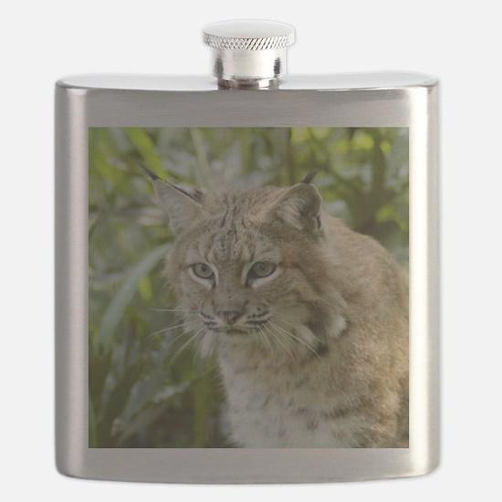 BobcatBCR010 Flask