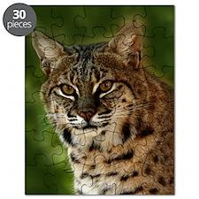 BobcatBCR056 Puzzle