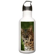 BobcatBCR056 Sports Water Bottle