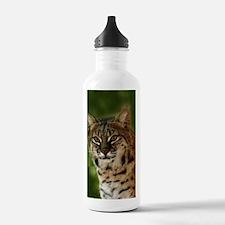 BobcatBCR056 Water Bottle