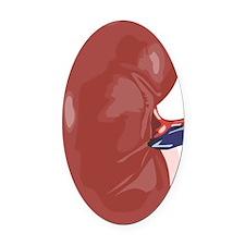 Kidney Oval Car Magnet