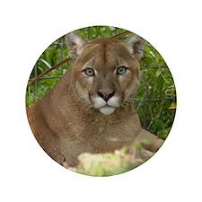 """Cougar 016 3.5"""" Button"""