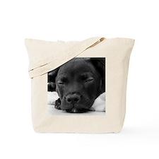DSC00931 B Tote Bag
