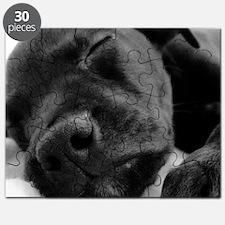 DSC00965 B Puzzle