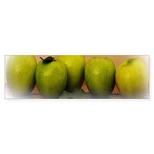 apples_bib Bumper Sticker
