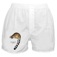 Ring-Tailed Cat Boxer Shorts