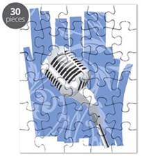 microphone Puzzle