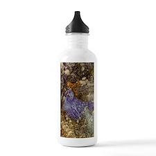 Fairy - Arthur Rackham Water Bottle