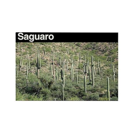 Saguaro NP v1 Rectangle Magnet (100 pack)