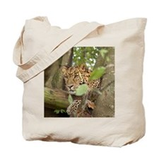 LeopardCheetaro001 Tote Bag