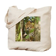 LeopardCheetaro012 Tote Bag