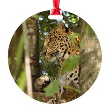LeopardCheetaro012 Ornament