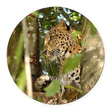 LeopardCheetaro012 Round Car Magnet