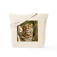 LeopardCheetaro013 Tote Bag