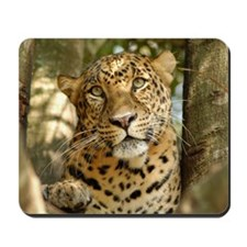 LeopardCheetaro013 Mousepad