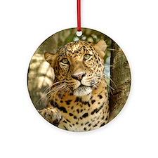 LeopardCheetaro013 Round Ornament