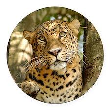 LeopardCheetaro013 Round Car Magnet