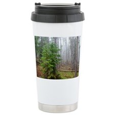 Mist in pine forest Travel Mug