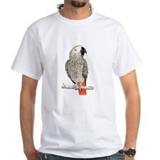 African Grey in Pencil Shirt