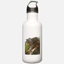 White tiger 013 Water Bottle