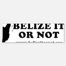 2-belizeitornot Bumper Bumper Sticker
