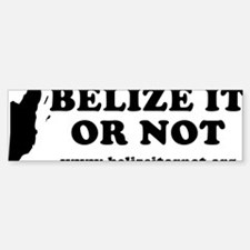 2-belizeitornot Sticker (Bumper)