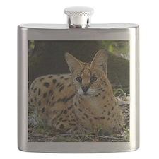 serval 041 Flask