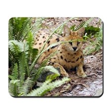 serval 047 Mousepad
