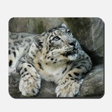 SnowLeopardBCR006 Mousepad
