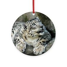 SnowLeopardBCR006 Round Ornament