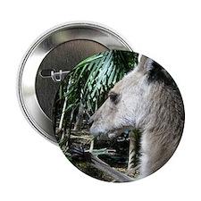 "Australia wallaby 2.25"" Button"