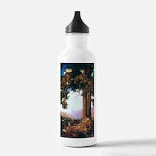 mp_post1 Water Bottle