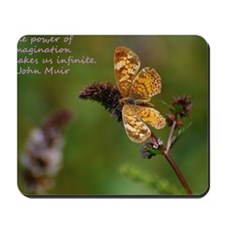 Orange butterfly #341-1 08-15-09 copy Mousepad