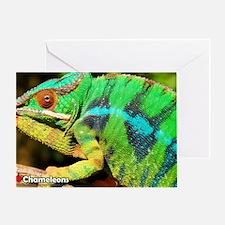 5-DSC_1183 Greeting Card