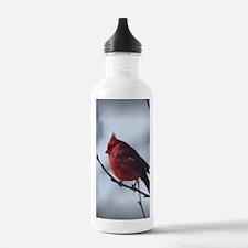 cardinaljournal Water Bottle