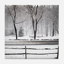 Winter Pond and Road Tote Tile Coaster